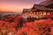 Ngôi đền Yamadera ngập chìm trong sắc đỏ lá phong Nhật Bản
